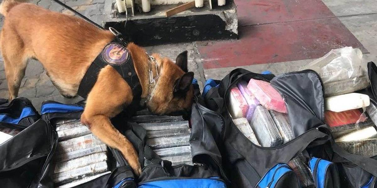 Polícia Federal apreende 280 quilos de cocaína no Porto do Rio de Janeiro