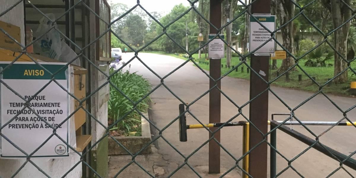Parques fechados em SP não têm aviso sobre riscos de febre amarela