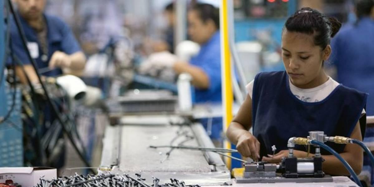 Agexport busca adherirse al seguimiento del fallo que suspende el trabajo a tiempo parcial