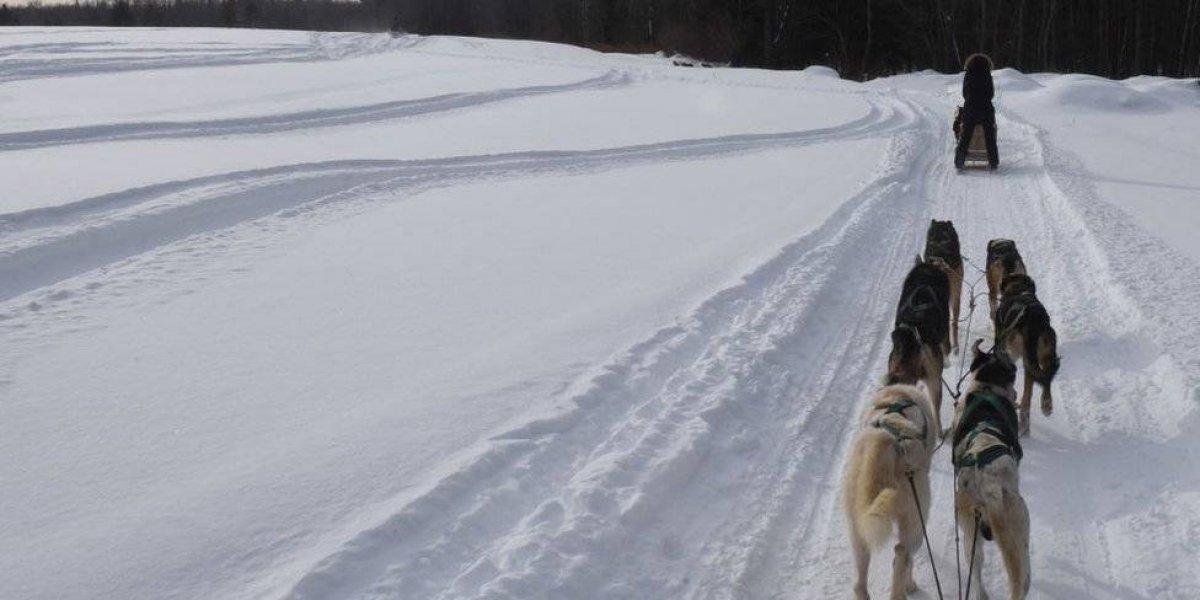 Ola de frío polar obliga a cancelar fiestas de año nuevo en Norteamérica