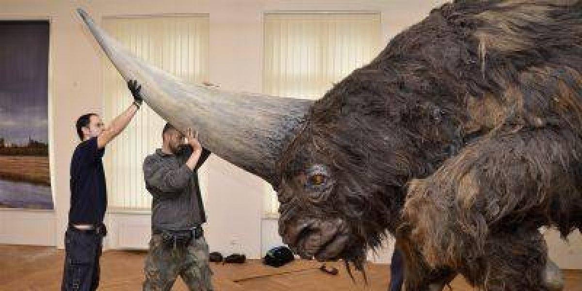 Encuentran restos de una especie de unicornio en Siberia