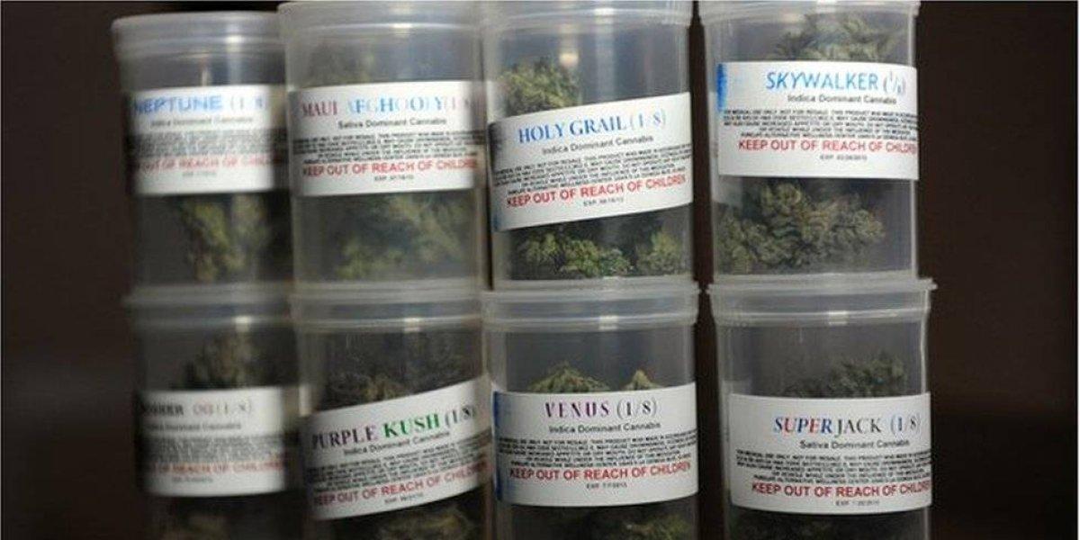 Departamento de Salud recomendó producto competidor de cannabis medicinal