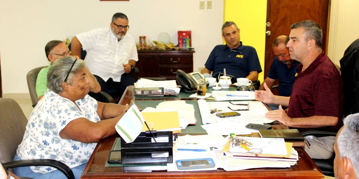 AEE informa planes de energización en Vega Alta