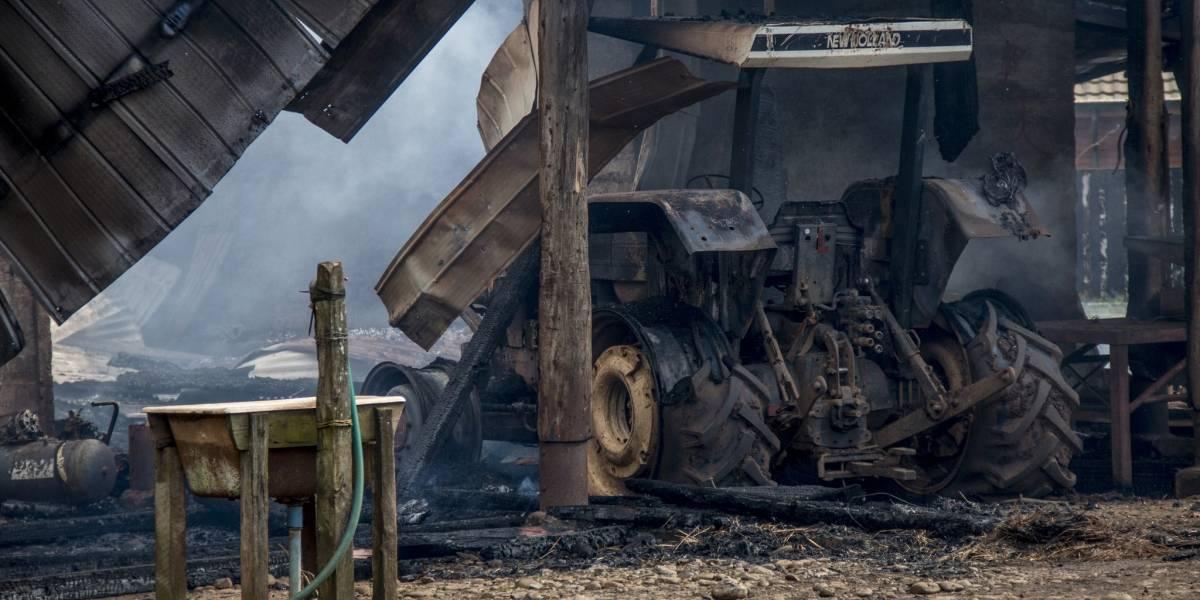 Ataque incendiario afecta a predio forestal en la Región de Los Lagos