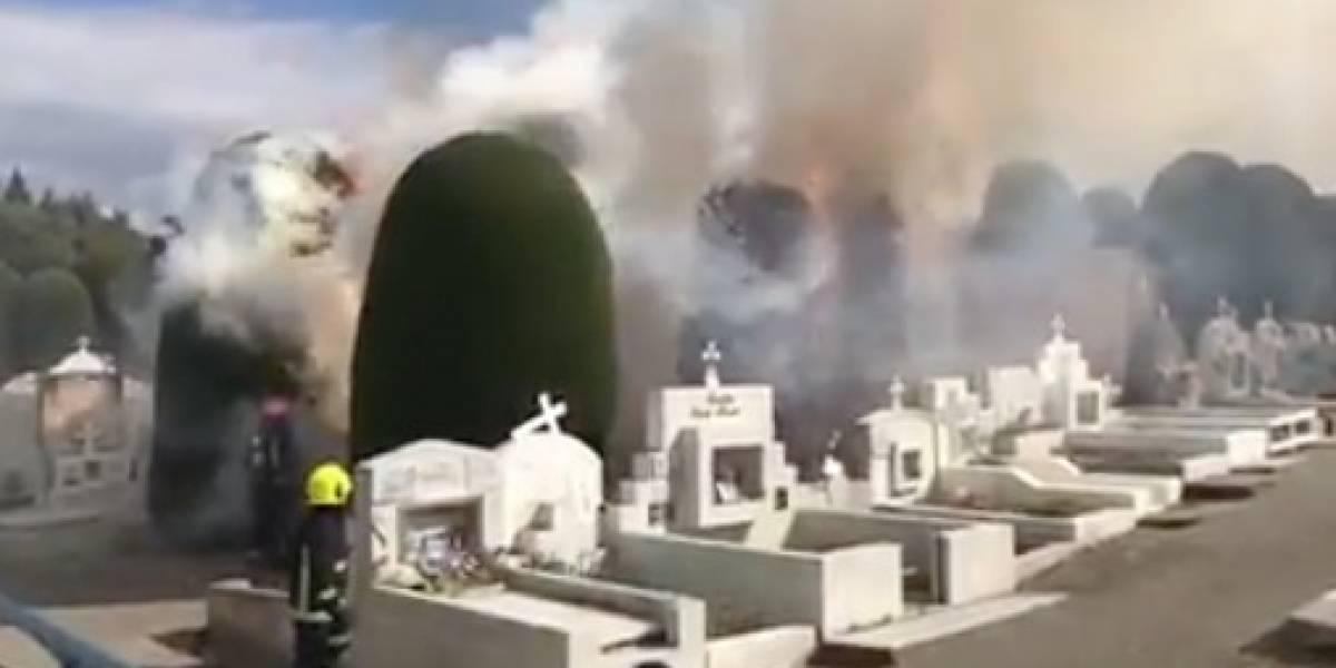 [VIDEO] Bomberos investiga incendio en el cementerio municipal de Punta Arenas
