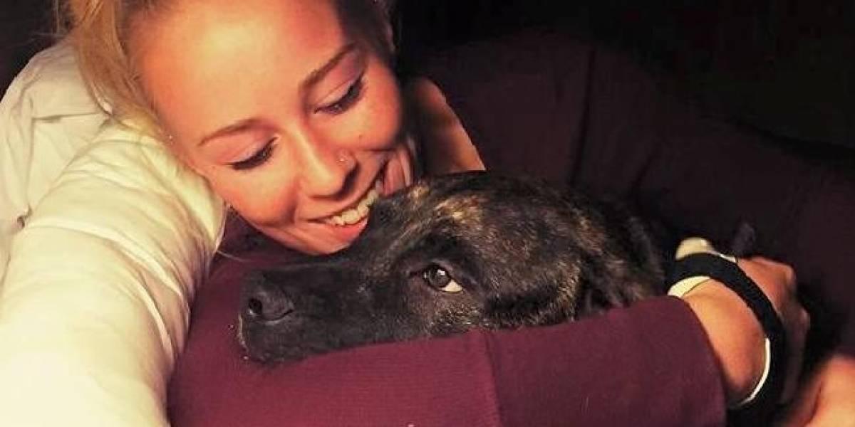 Crece el enigma: revelan brutal vuelco en caso de mujer que fue devorada viva por sus pitbulls