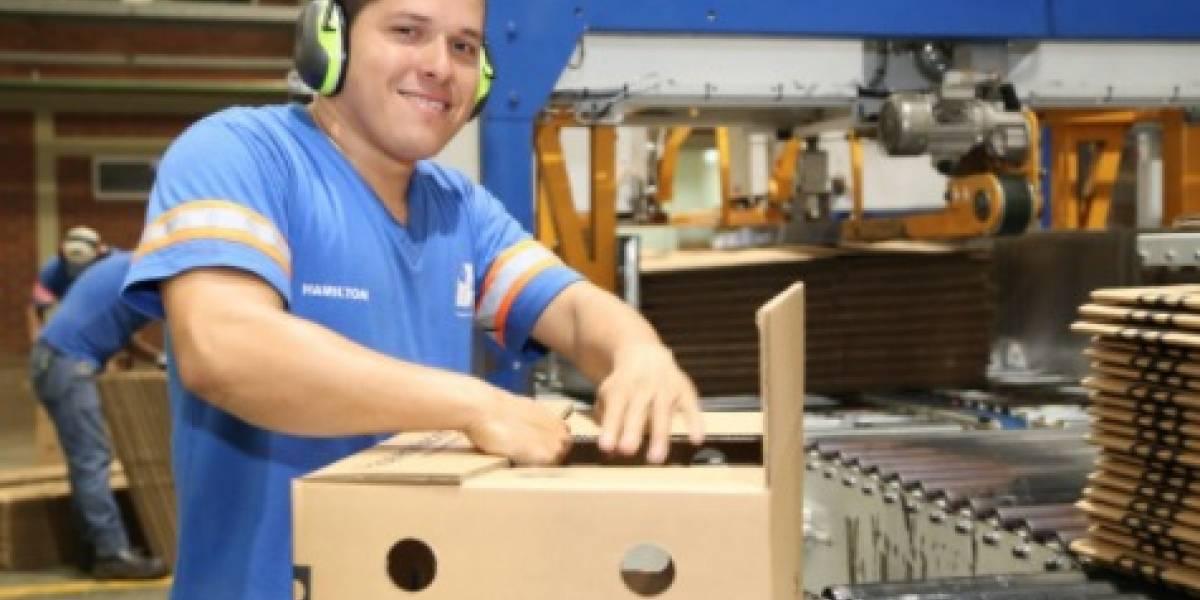 Lenín Moreno presentará 'Política Nacional de Empleo'