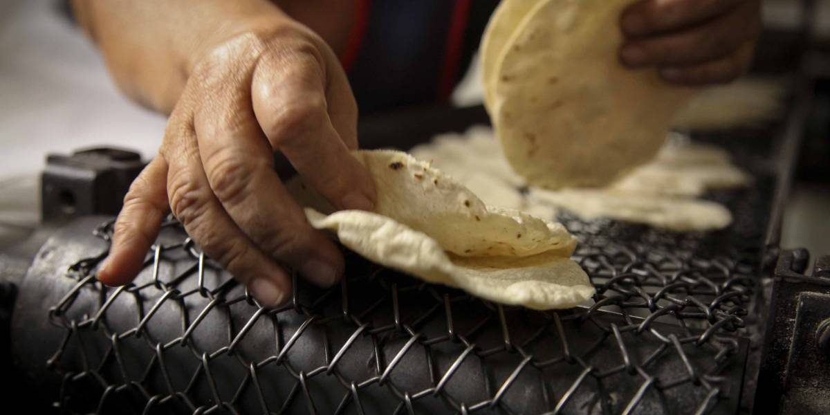 'Tortillazo' aumentaría precio hasta 17 pesos por kilo