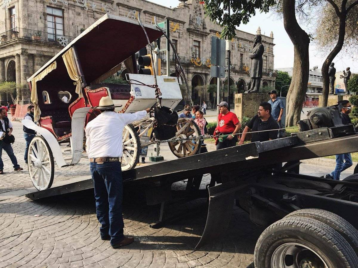 FOTO: Ayuntamiento de Guadalajara