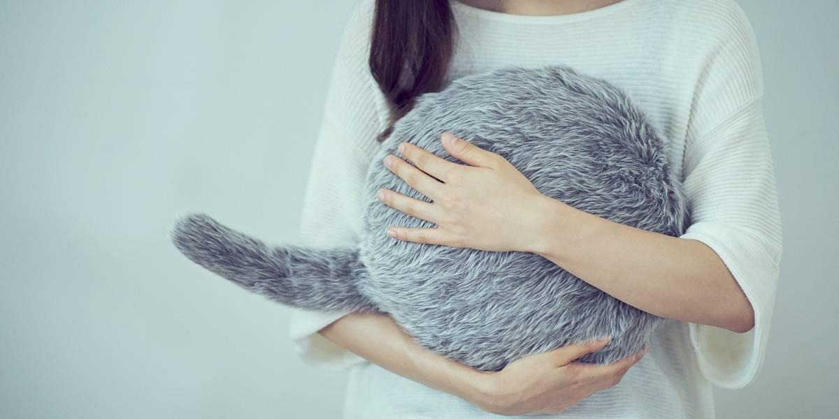 Almofada que imita pet é alternativa para quem não pode ter bichinhos em casa