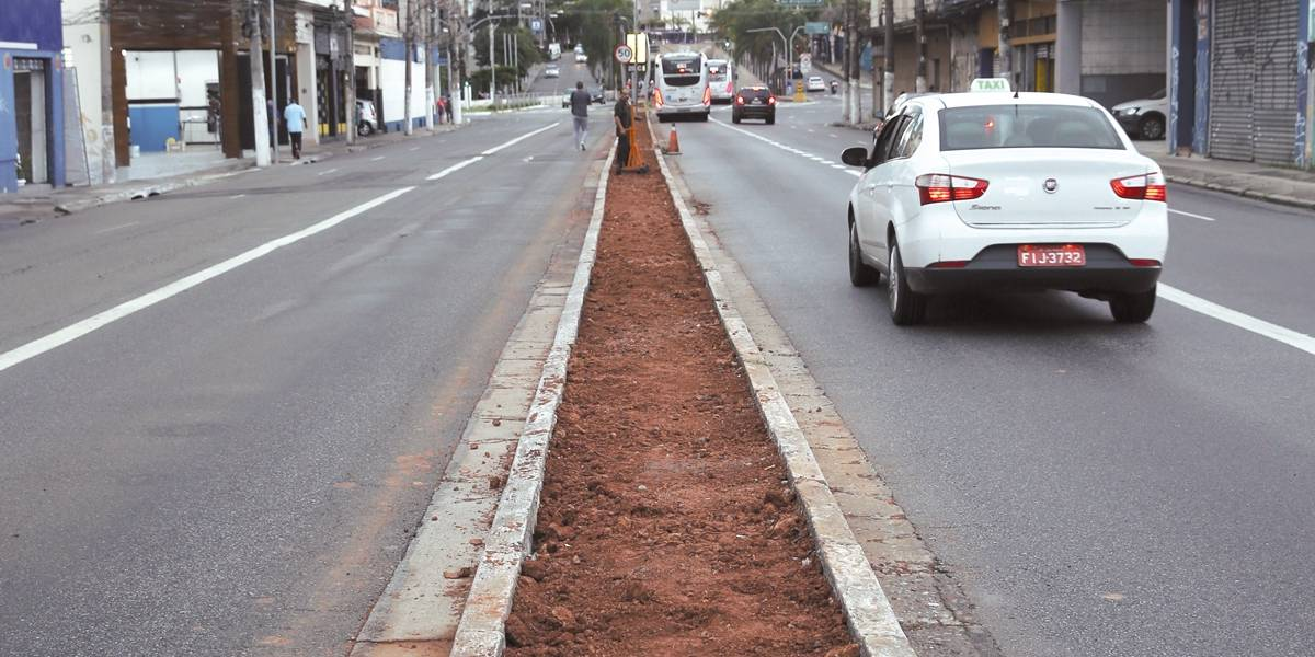 Avenida Santo Amaro vai ganhar canteiro verde