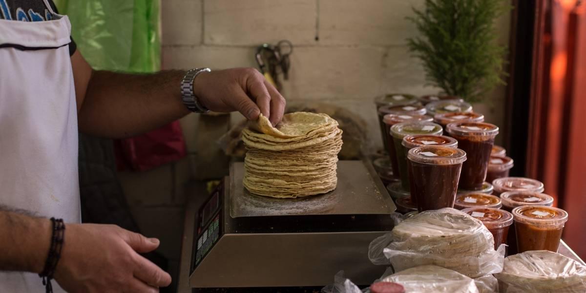 Secretaría de Economía asegura que aumento en precio de tortilla carece de fundamentos
