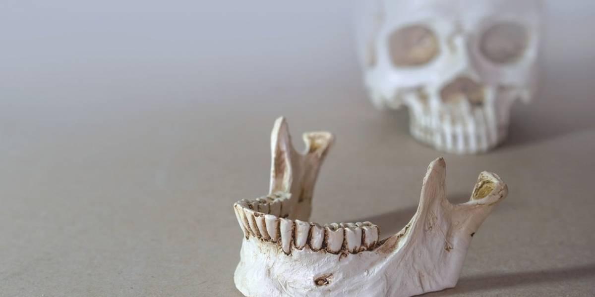 """""""Espetáculo e violência"""": 11 fatos curiosos sobre o passado da Odontologia"""