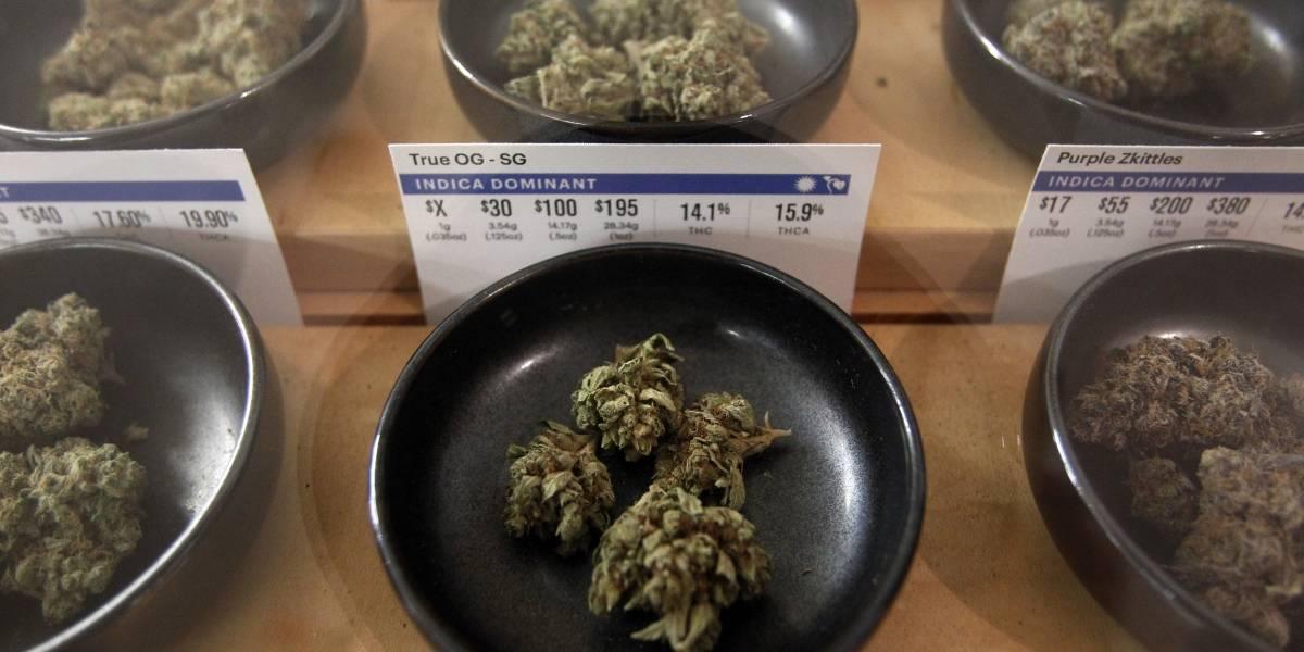 ¿Se acabarán las largas filas por marihuana en EEUU? Confusión luego que el gobierno de Trump arremetiera contra su legalización