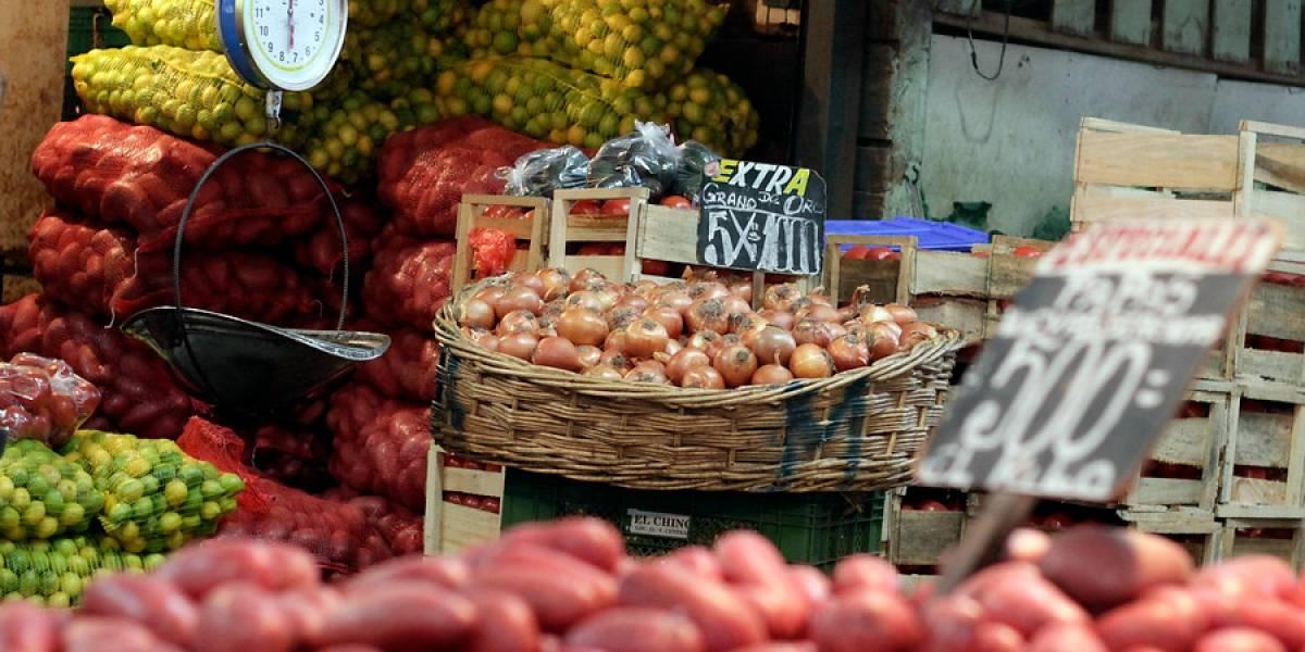 Exportadores de frutas se mantienen alertas ante baja del dólar
