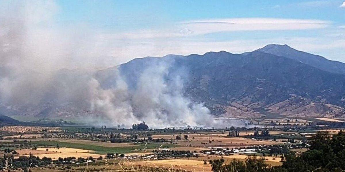 Altas temperaturas: Declaran alerta roja en dos comunas de la Región Metropolitana por incendios forestales
