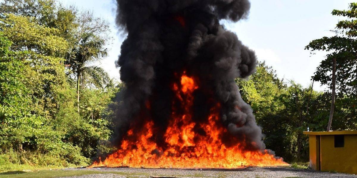 Procuraduría incinera más de dos toneladas de cocaína