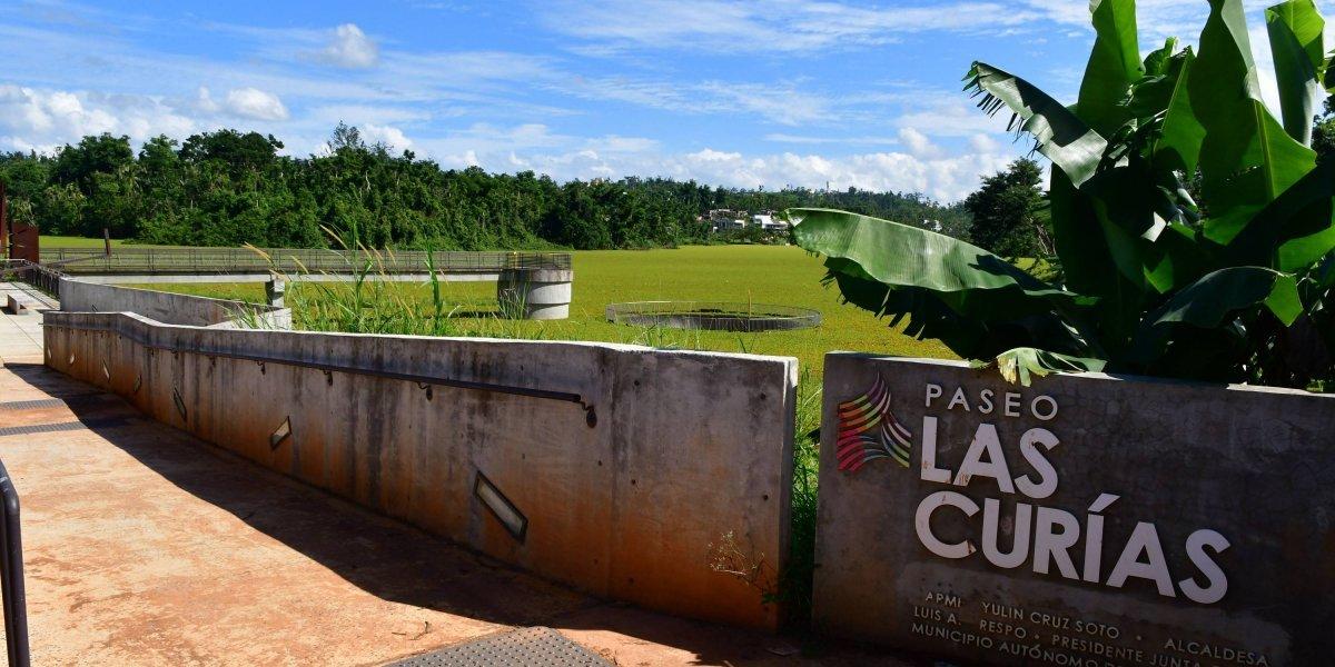 Se echa a perder impulso a la comunidad Las Curías en San Juan