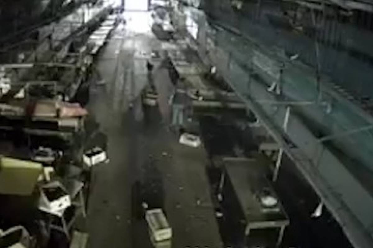 Denuncian cruel maltrato animal en mercado Lo Valledor