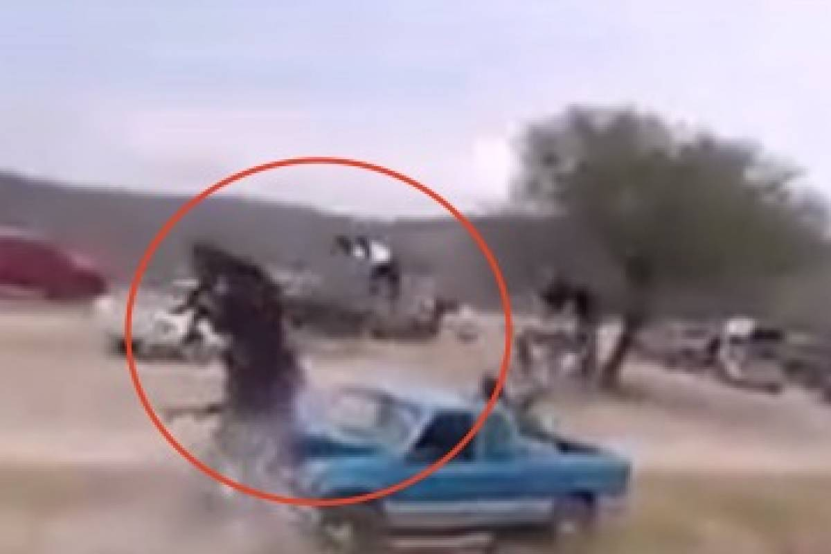 Caballo se estampa contra camioneta y jinete sale volando durante carrera