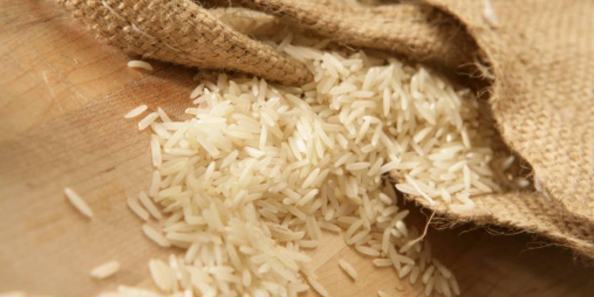 """Intendencia del Guayas investiga """"arroz plástico"""""""