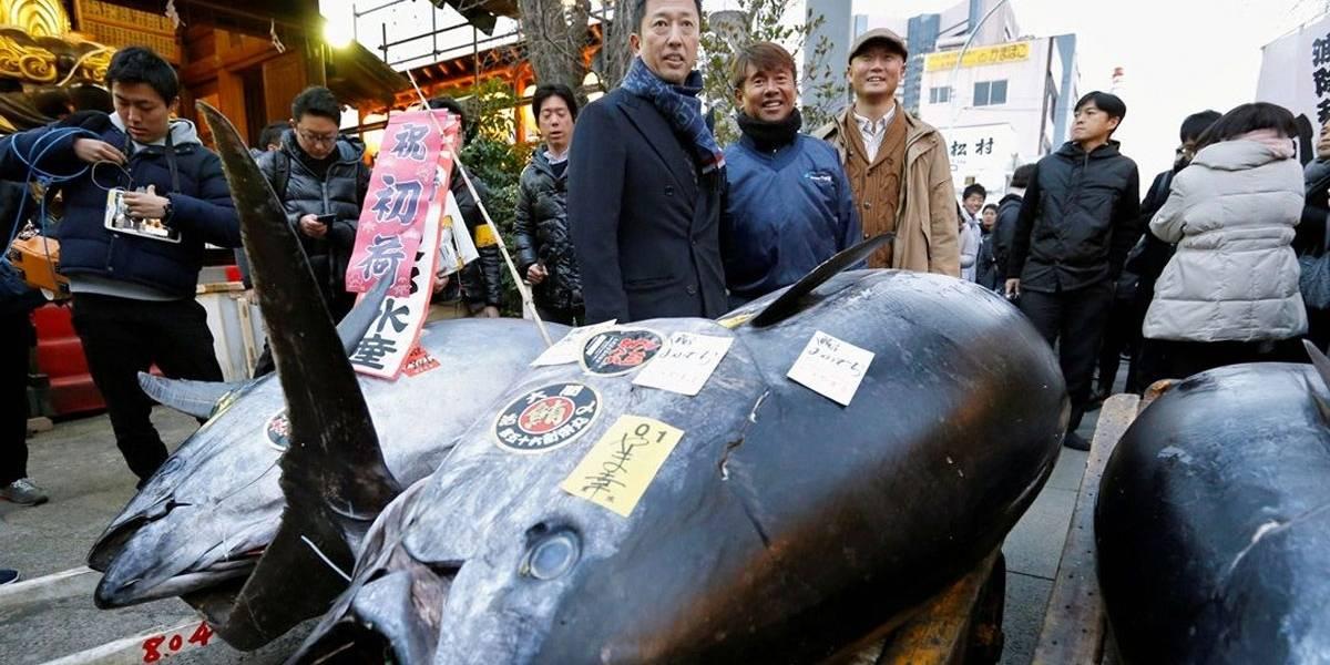 Atum é vendido por US$323 mil em último leilão de Ano Novo em mercado do Japão
