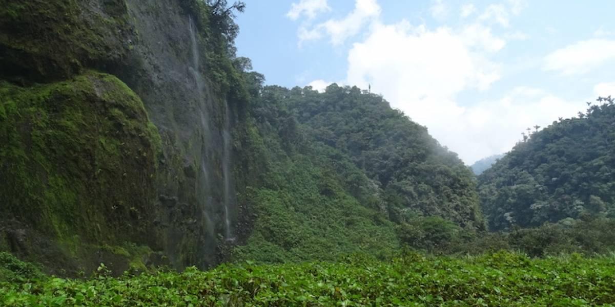 La belleza escondida de las nuevas áreas protegidas de Latinoamérica