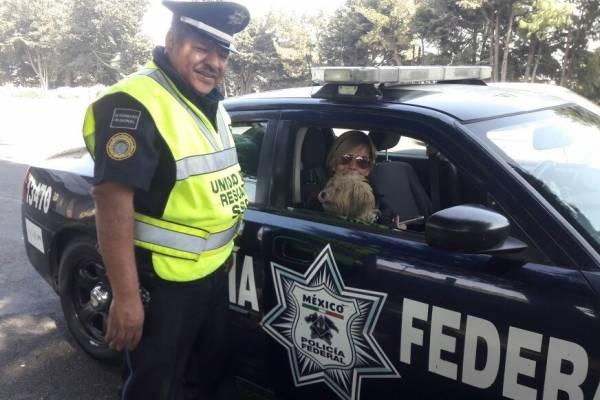 Policia perro