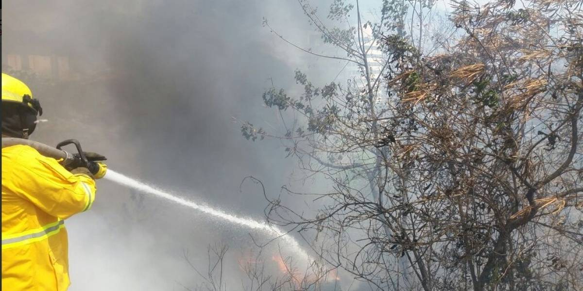 Reportan incendio de maleza en la Av. del Bombero