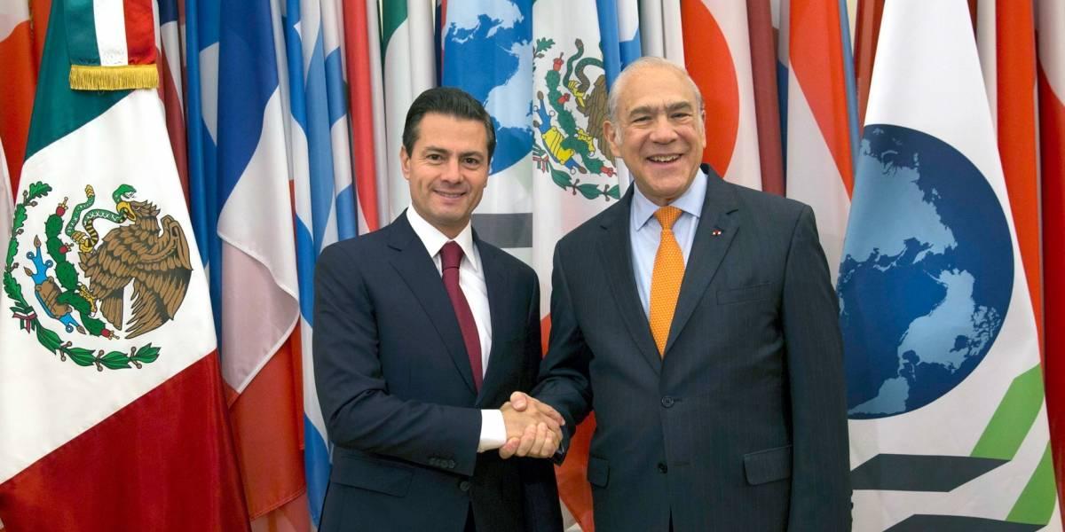 Gurría viajará a México para presentar estudios sobre rendición de cuentas