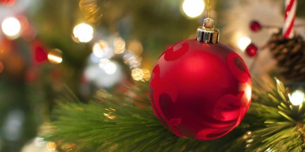Agencias ambientales establecerán centro de reciclaje árboles de Navidad