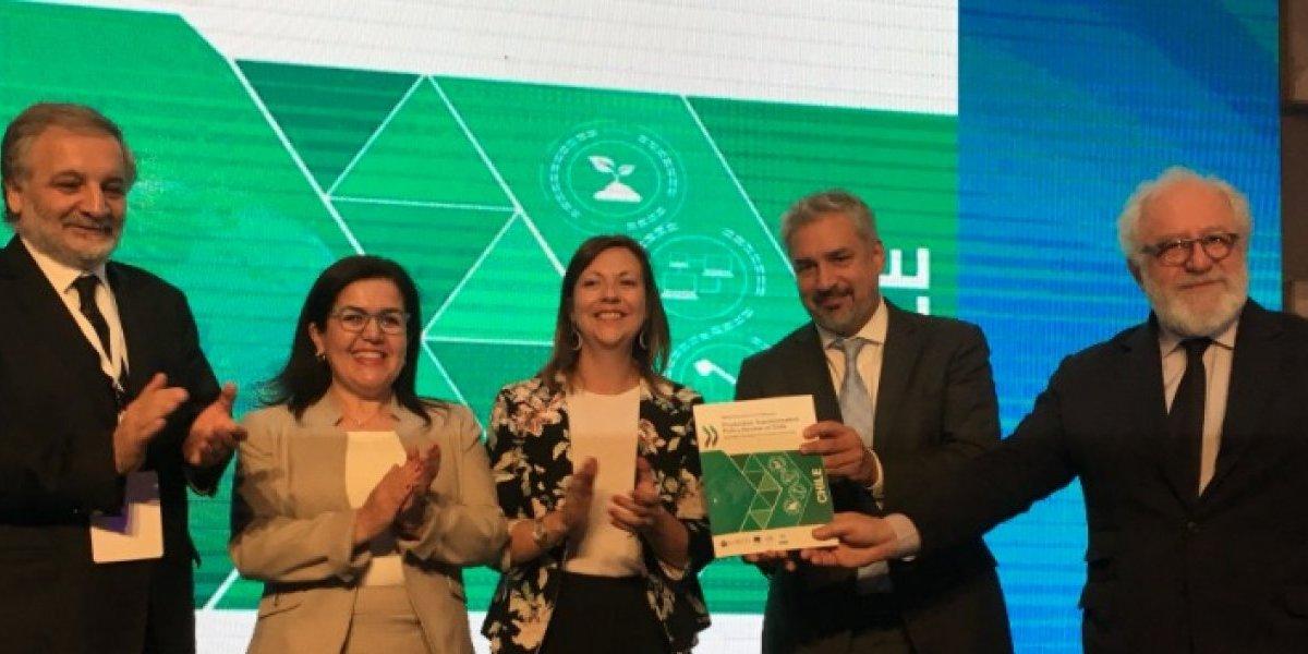 Innovación y actitud colaborativa impulsarán a Chile en el marco de la OCDE