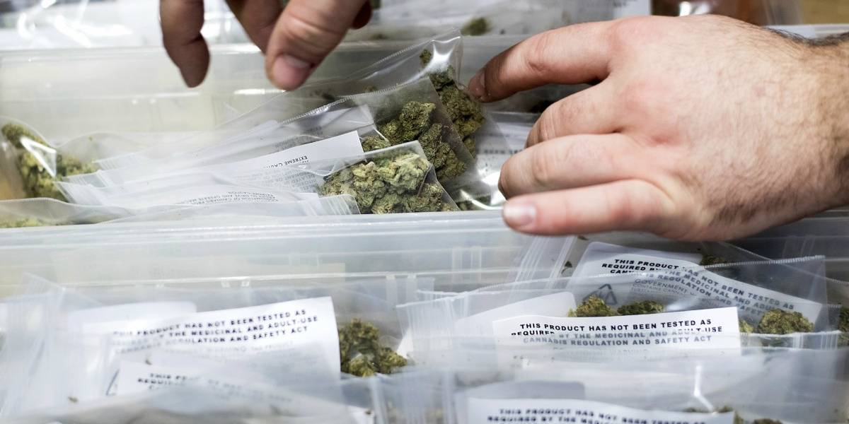 En California comienzan a vender vino de marihuana