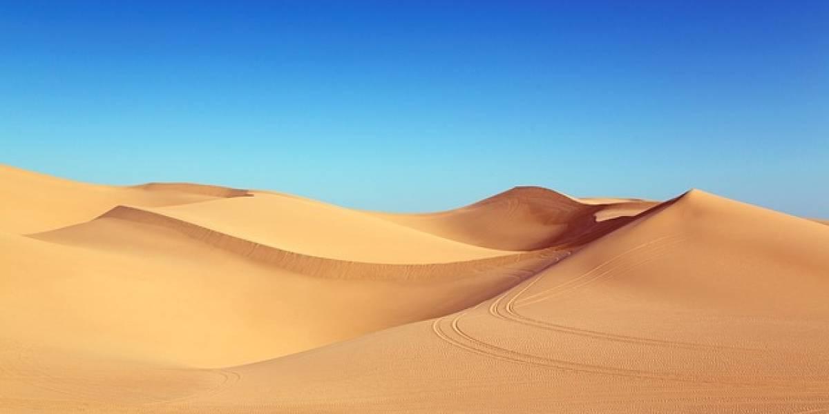 FOTOS. Así fue la impresionante nevada en el desierto del Sahara