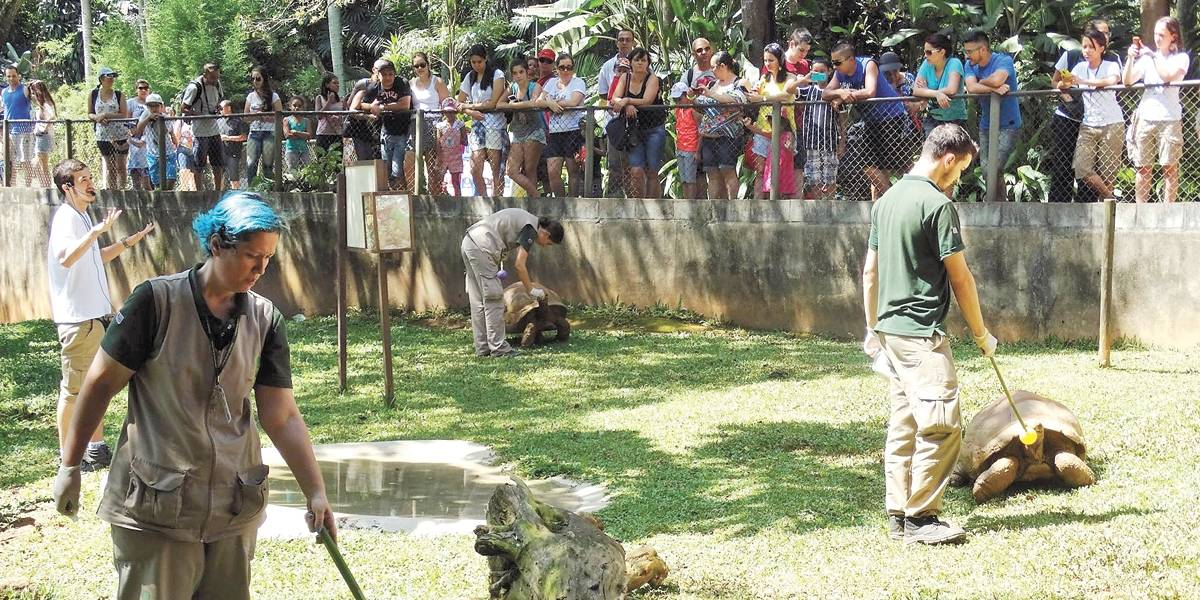 Zoológico de São Paulo mostra bastidores aos visitantes