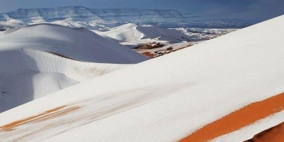O antes e depois do deserto do Saara nevado: as fotos são surpreendentes