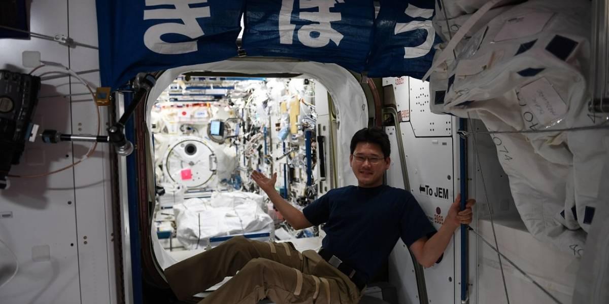Falsa alarma: astronauta japonés debe disculparse por decir que creció 9 centímetros en el espacio