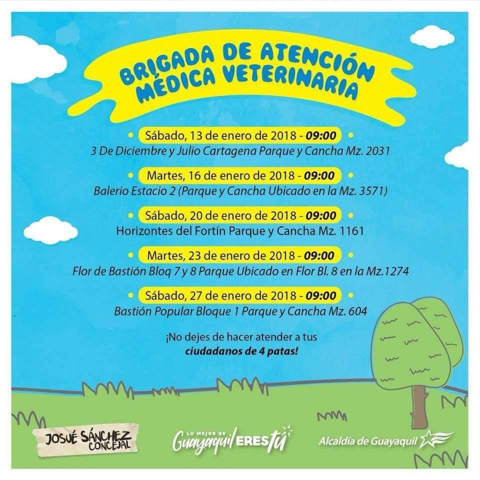 Brigadas veterinarias