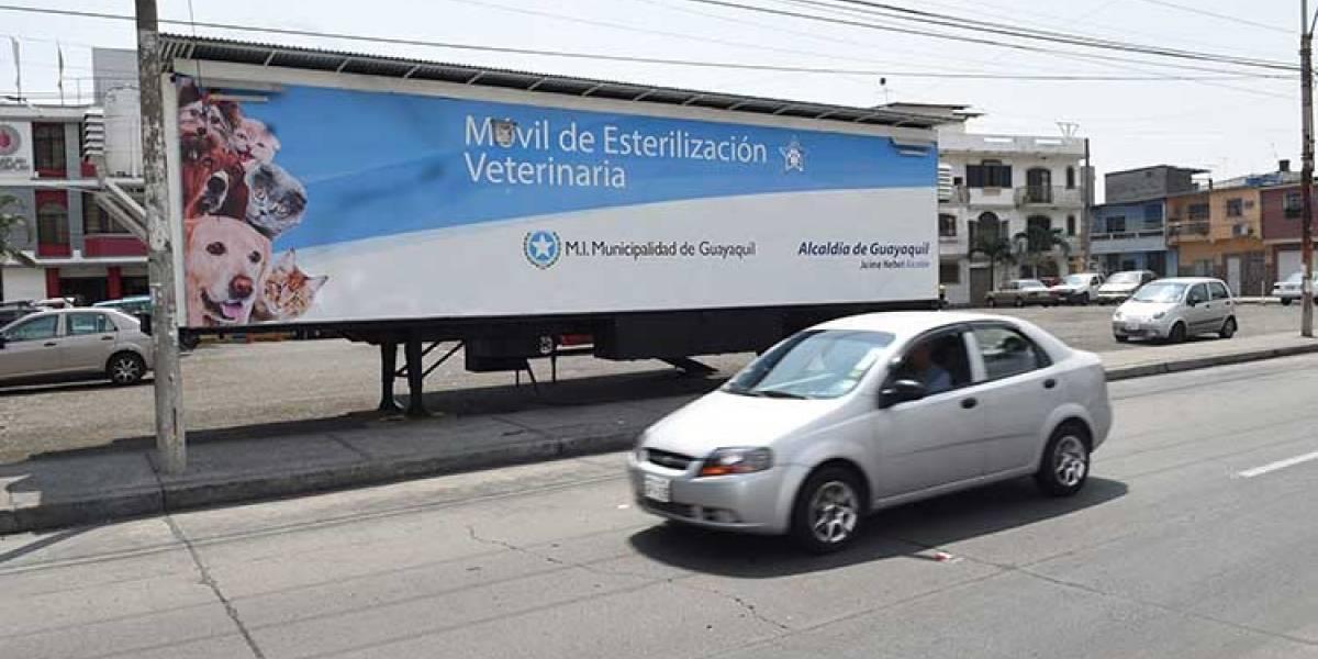 Brigadas veterinarias atenderán a mascotas en Guayaquil