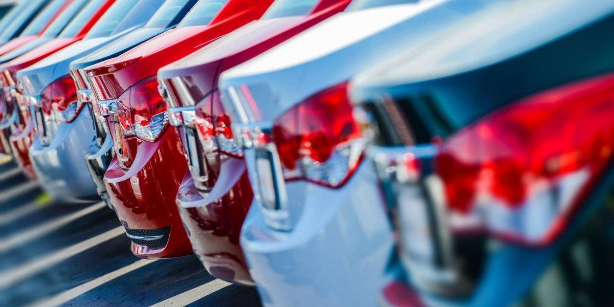 Dealers esperan que sea un año de mayores ventas