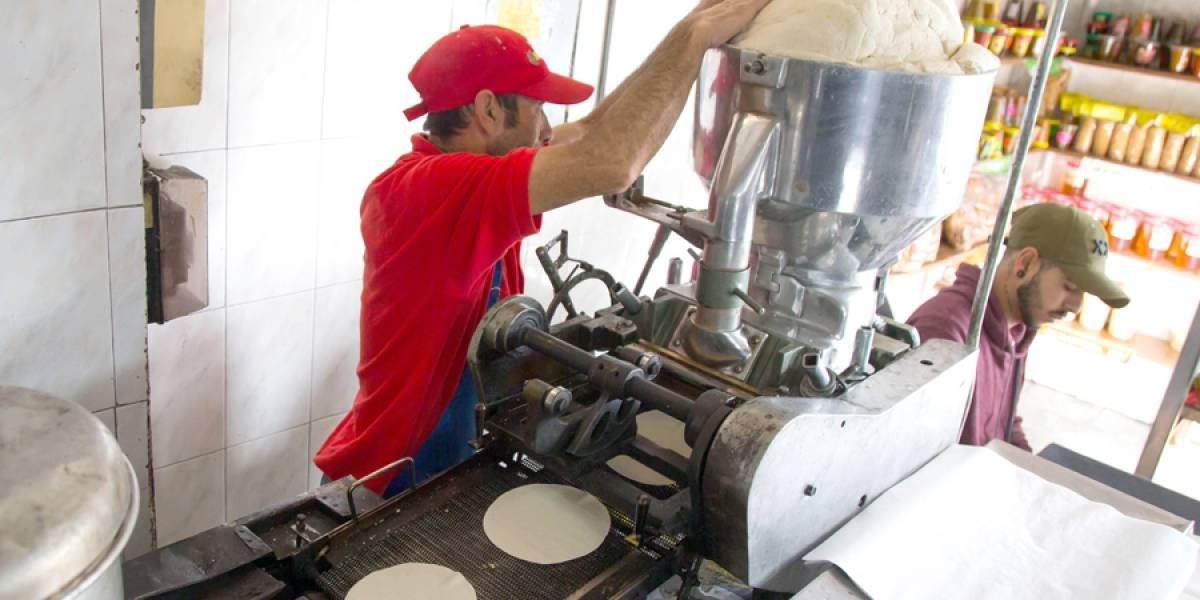 Tortillerías de Jalisco luchan por la supervivencia
