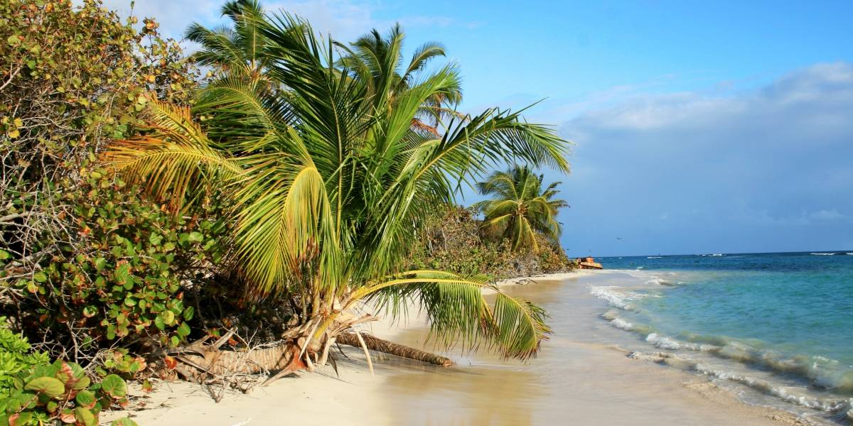 Revelan fecha de fin de limpieza de Playa Flamenco