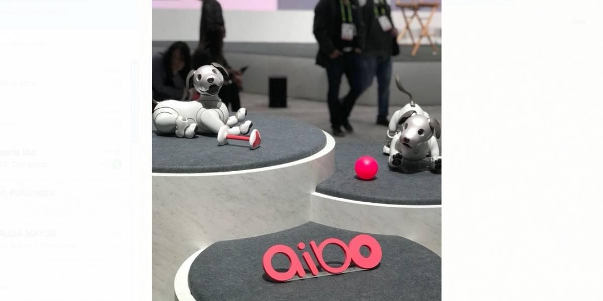 AIBO el perro con inteligencia artificial