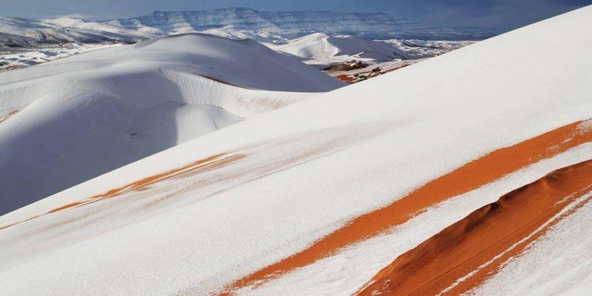 Neve cai no deserto do Saara após 37 anos
