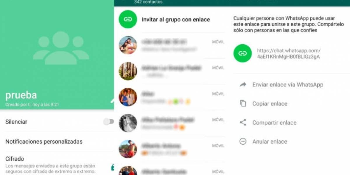 ¿Participas en chats de grupo en WhatsApp?