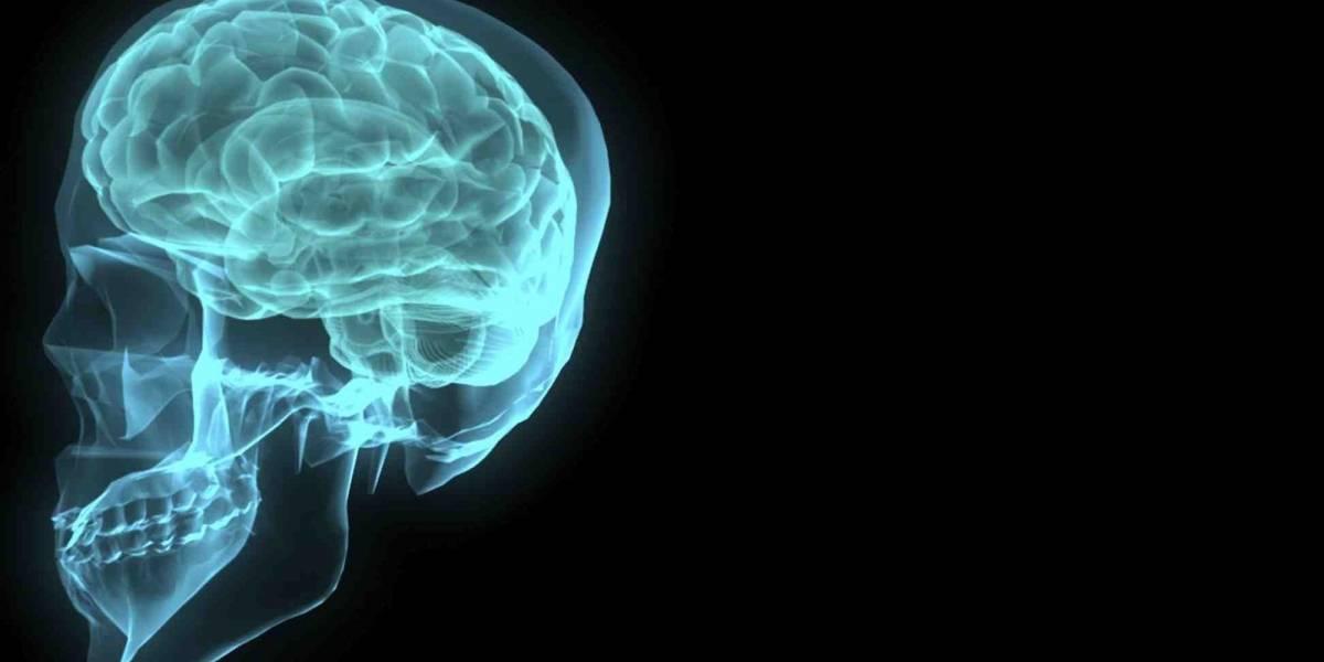 Cérebro antecipa decisões em jogos de azar, diz estudo