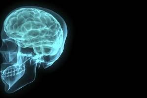 https://www.metrojornal.com.br/tech/2018/01/21/cerebro-antecipa-decisoes-em-jogos-de-azar-diz-estudo.html