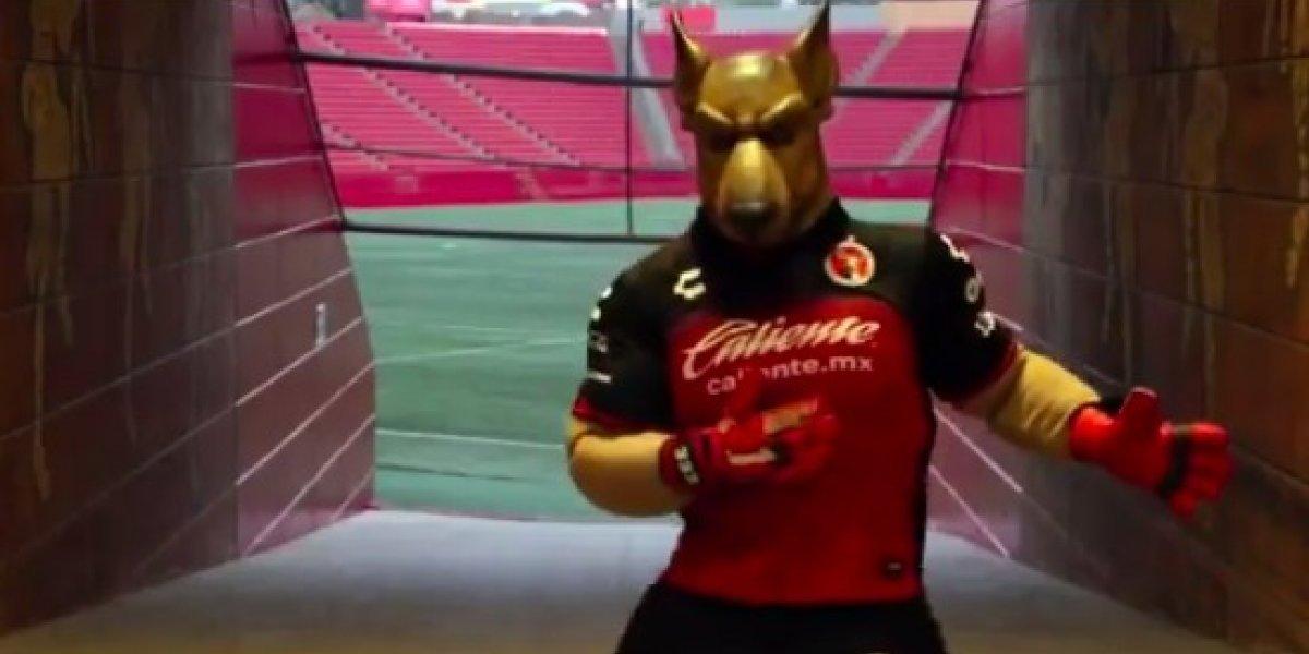VIDEO: Mascota de Xolos comparte su playlist de reggaetón