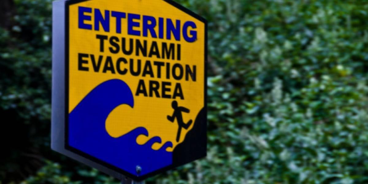 Las impactantes imágenes del tsunami que azotó las costas de Indonesia tras poderoso terremoto