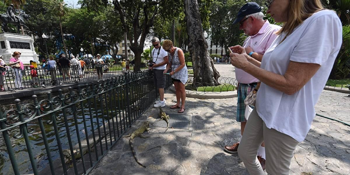 2.489 turistas llegarán por cruceros a Guayaquil